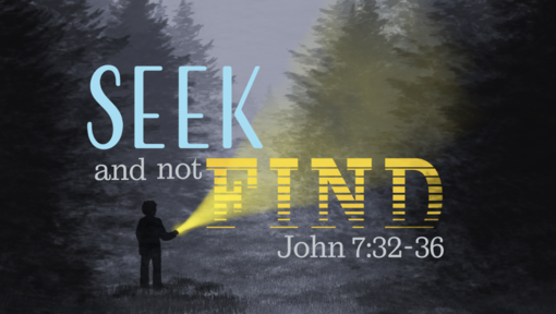 Seek and Not Find
