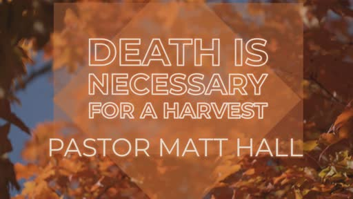 Death is Necessary For A Harvest