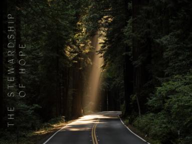 The Stewardship of Hope