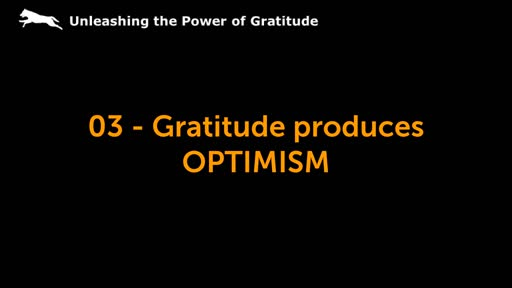 03 - Gratitude produces OPTIMISM