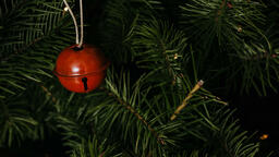 Red Christmas Ornament  image 4