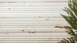 Cedar Branches  image 1