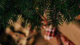 Christmas Presents  image 3