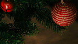 Christmas Tree  image 3