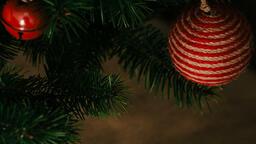 Christmas Tree  image 3
