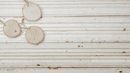 Wood Slice Ornaments  image 1