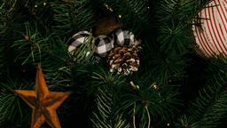 Christmas Tree  image 1