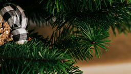 Christmas Tree  image 2