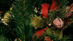 Christmas Tree  image 4