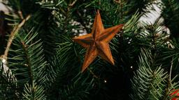Rustic Christmas 2018 rusty star ornament 16x9 b6ee3092 2829 4790 bab6 e3bab59f8d38 image