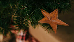 Rusty Star Ornament  image 2