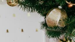 Christmas Tree Close-Up  image 2