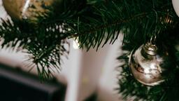 Christmas Tree Close-Up  image 7