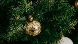 Metallic Christmas 2018 ornament 16x9 c5345814 fa7c 4437 9c3a 556c7f017854 image
