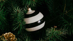 Metallic Christmas 2018 ornament 16x9 01c51315 2519 421b b84a ac68c4c4a80d image
