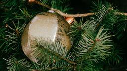 Christmas Ornament  image 3