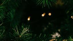 Metallic Christmas 2018 tree closeup 16x9 b0a759c3 c064 48f9 b036 f9543b147967 image