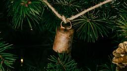 Christmas Ornament  image 4