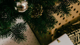 Christmas Presents under the Tree  image 3