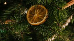 Scandinavian Christmas 2018 tree closeup 16x9 3b7188a3 73c9 4a09 97f5 b042bf439119 image