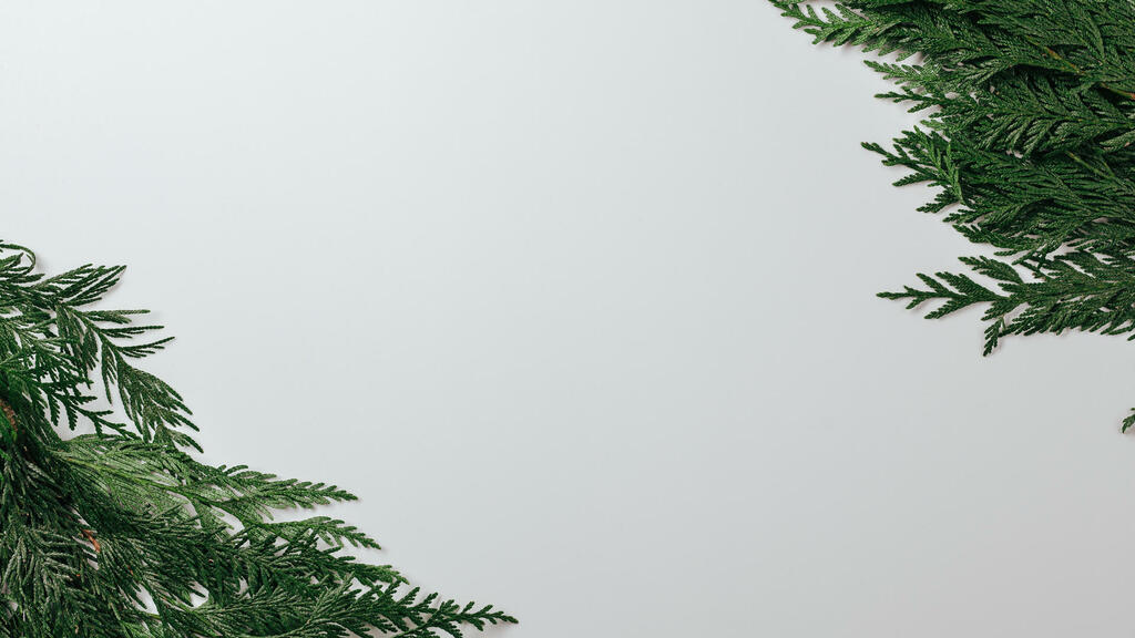 Cedar Branches large preview