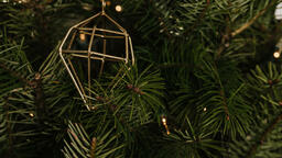 Christmas Ornament  image 2