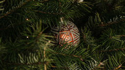 Christmas Ornament  image 3