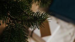 Scandinavian Christmas 2018 tree closeup 16x9 c82018fb 04df 4894 90df a941db5299d8 image