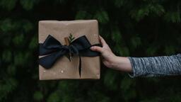 Christmas Present  image 2