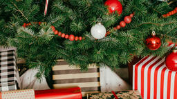 Christmas Presents under the Tree  image 1