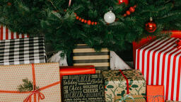 Christmas Presents under the Tree  image 2