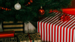 Christmas Presents under the Tree  image 5