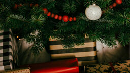 Christmas Presents under the Tree  image 11