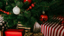 Christmas Presents under the Tree  image 13