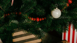 Christmas Presents under the Tree  image 14