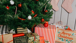 Christmas Presents under the Tree  image 15