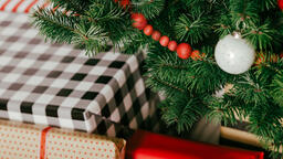 Christmas Presents under the Tree  image 16