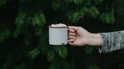 Mug of Hot Cocoa  image 1