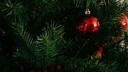 Modern Christmas 2018 red ornament 16x9 75637b34 9e2d 4f5c 85fa b4a0abf32528 image
