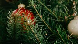 Modern Christmas 2018 tree closeup 16x9 042a4b4b 7be0 4b2a a17f 3f0fc6e9ee83 image