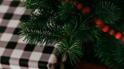 Modern Christmas 2018 tree closeup 16x9 8ce99559 bf4c 477d bcf1 ad743660d914 image