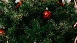 Modern Christmas 2018 tree closeup 16x9 0ee4a464 e07b 4aa2 9bb5 97a057aba985 image