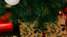 Modern Christmas 2018 tree closeup 16x9 eab95a7d 85c5 4777 8efb 1f49b550e2b5 image