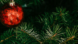Red Christmas Ornament  image 14