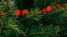 Modern Christmas 2018 tree closeup 16x9 188e84e9 36be 4182 b7f6 6b67ed3072bf image