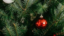 Modern Christmas 2018 red ornament 16x9 3f867cf7 1e73 4c0c a550 934bf373f8f3 image