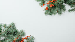 Christmas Greenery  image 3