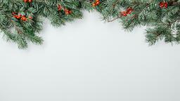 Christmas Greenery  image 7