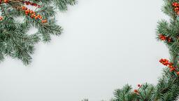 Christmas Greenery  image 9