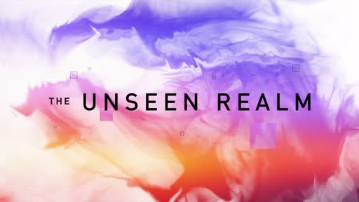 The Unseen Realm - Trailer
